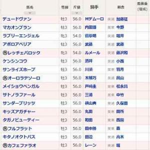 (73)東京~ユニコーンS予想