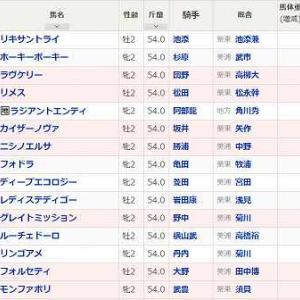 (82)函館~函館2歳S予想