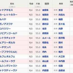 (87)札幌~クイーンS予想