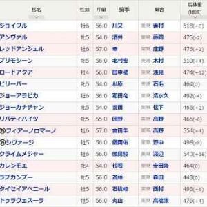(135)阪神~京阪杯予想