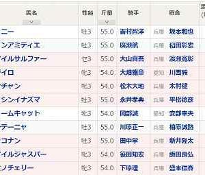 [22]姫路~兵庫ユースカップ予想