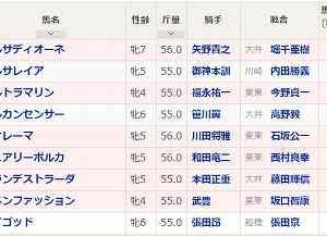 [69]川崎~スパーキングレディーカップ予想