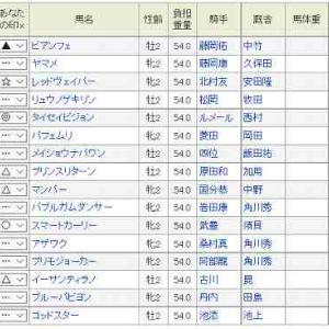 (62)函館~函館2歳S予想