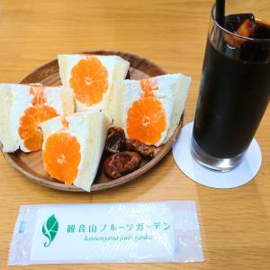 みかんサンドに柿パフェ