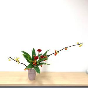 花なすび、