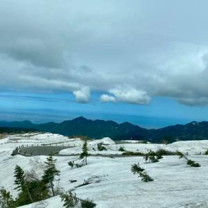 初めての「雪の大谷」^^