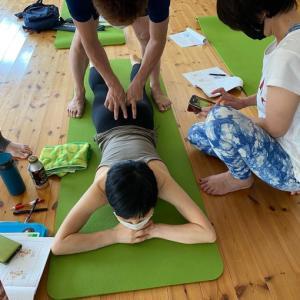 お師匠in富山「rfe-骨盤・腰部アドバンス」セミナー