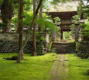 佐久の苔寺。