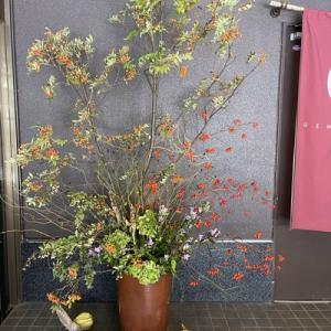 秋の装い常世の木の実