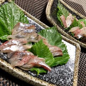 【 昨日の魚 】