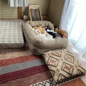 てっちゃんのベッドは