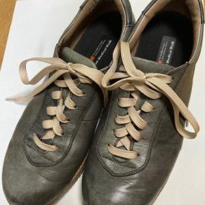 靴が見違える