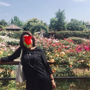 薔薇を見に