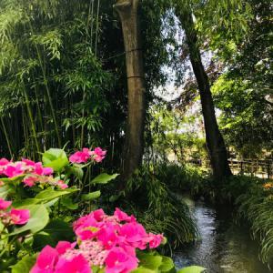 モネの庭のあるジヴェルニーへ