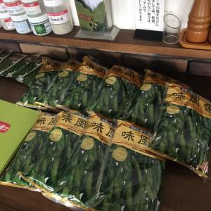 枝豆の種が