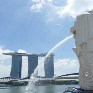 【動画でご紹介】シンガポールの海の美男子