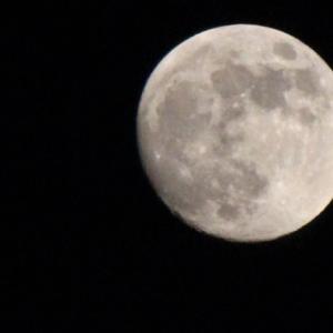 82才女性が月へ