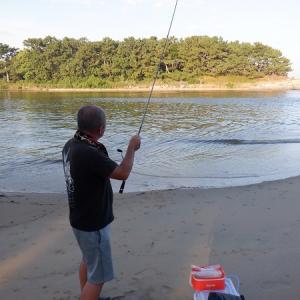 バイオ川でキス釣り
