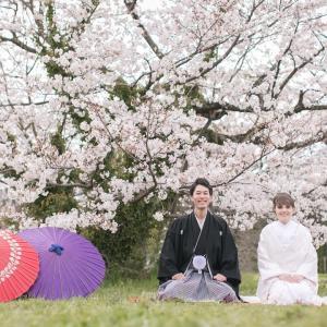 Nos photos de mariage sous les cerisiers
