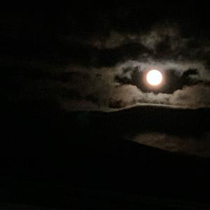 中秋の名月。キレイです!