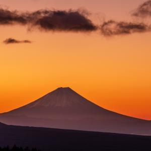 富士山コレクター  2
