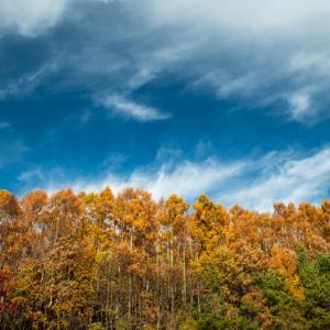 里の秋 3