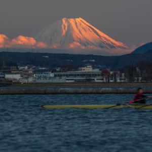 富士山コレクター3