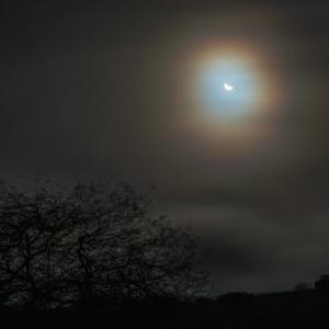 月も撮ってます