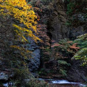 横谷峡の秋