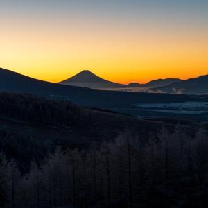 富士山コレクター