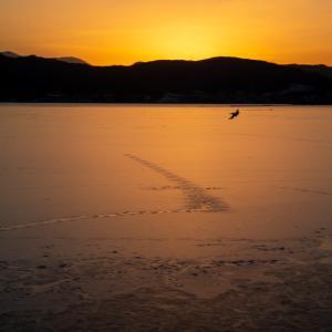 凍れる夕陽