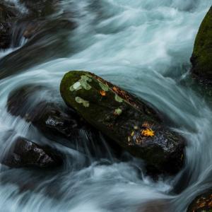 初秋の流れ