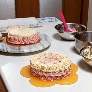 『オンブルケーキ』