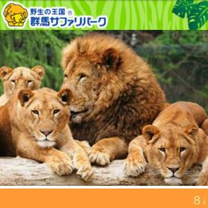 埼玉県民の方へ  群馬サファリパークの半額クーポンありました!