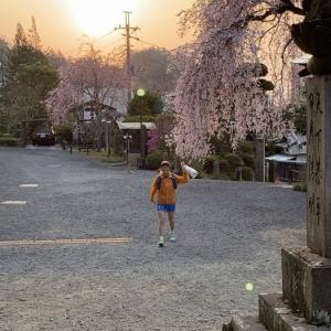 Road to UTMF 2019 その1(前置き編)