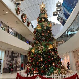 フィリピンはクリスマスモード♪