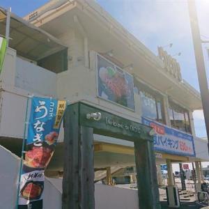 徳島県産すだちの冷製おろしうどんとミニいくら丼~♪