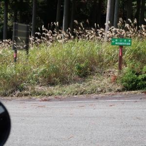 峰山高原方面に向かって白道を南下、太田ダム方面へ