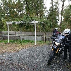 最終日は雨上がりのびわ湖岸から宇治川ラインへ