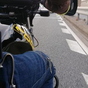 淀川を渡りました!