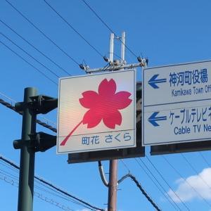 見どころいっぱいの神河町 ~ 来年の春は桜を見に来よう ~