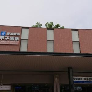 地域を見守ってきた樹齢100年のクスノキ ~ 阪神甲子園駅 ~