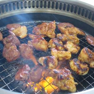 煙もごちそう ~ コスパ最高の鶏焼肉 ~