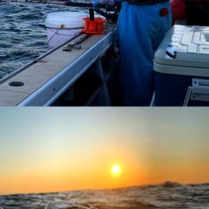 白浜沖の海にもワラサ到来@柿崎港「兵助屋」