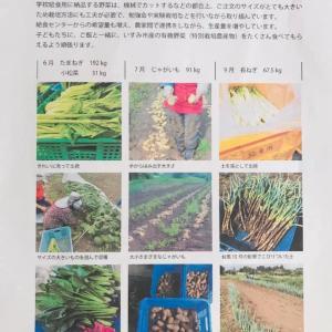 いすみ市 学校給食に有機農産物使用にチャレンジ!