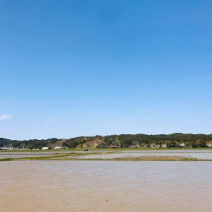 田植えの準備もはじまり、田んぼに水が入りました。