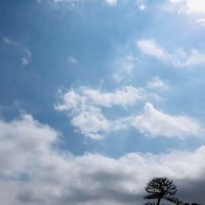 広ーい空と雲  日々 気になります。