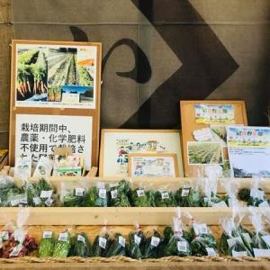 いすみ暮らし いすみや・いラ研  コラボ店舗 夏野菜たくさん。