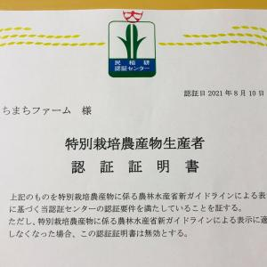 いすみ市の学校給食向け有機野菜生産者さんそろって、特別栽培★★★認証取得