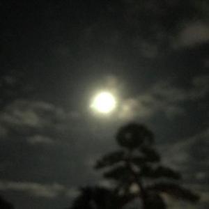 広ーい空と雲 日々 気になります。 2021年は満月 中秋の名月(十五夜)